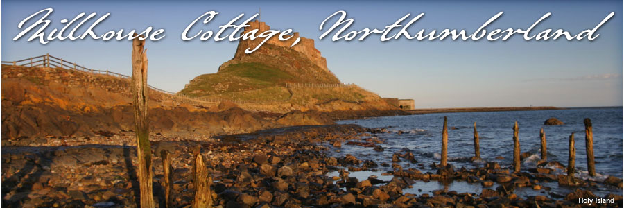 Holiday cottage Bamburgh | Budle bay | Self catering cottage